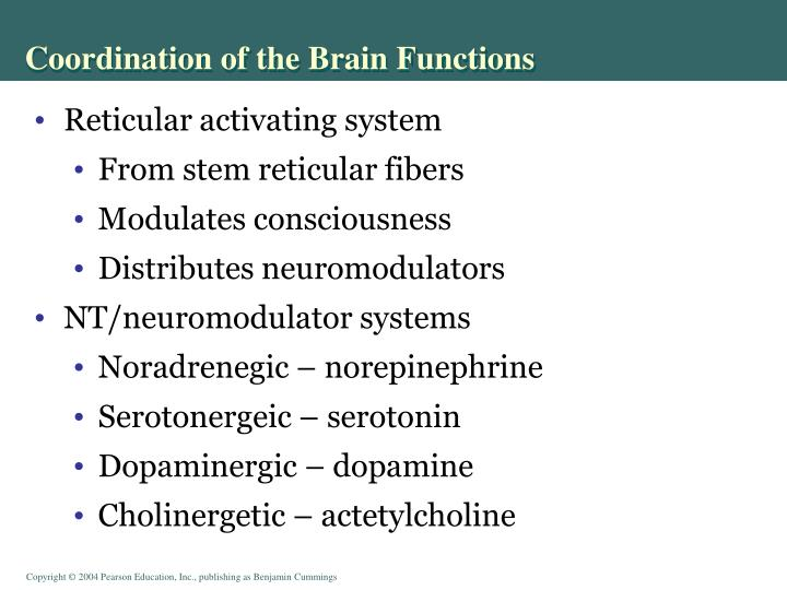 Coordination of the Brain Functions