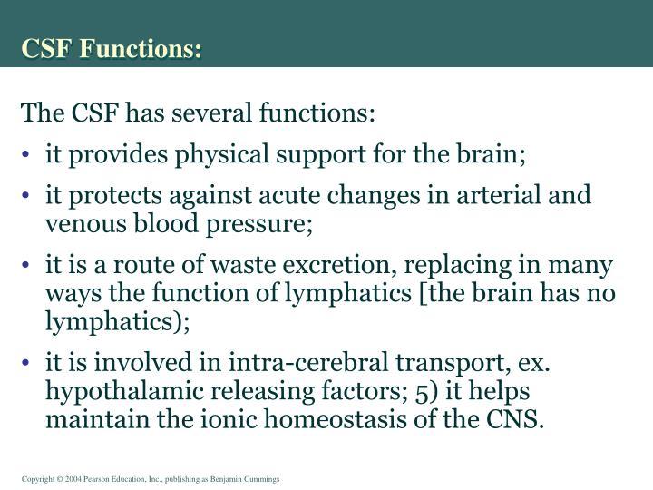 CSF Functions: