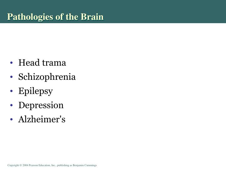 Pathologies of the Brain