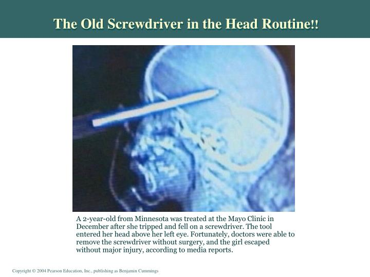 The Old Screwdriver in the Head Routine