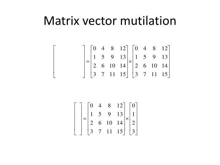 Matrix vector mutilation