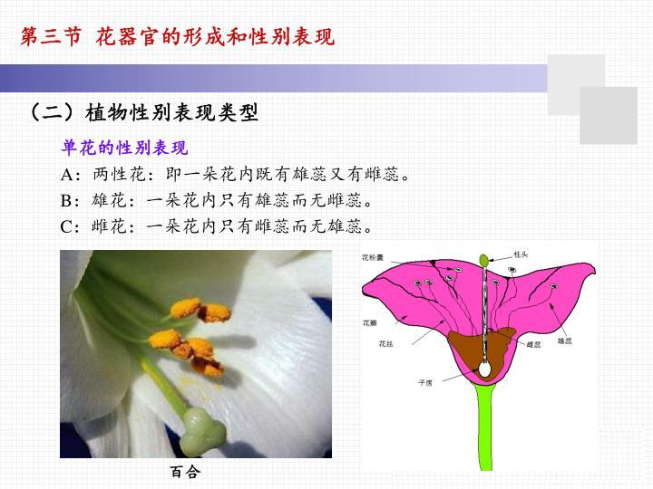 第三节 花器官的形成和性别表现