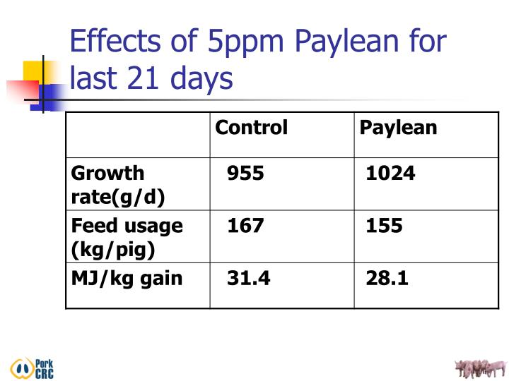Effects of 5ppm Paylean for last 21 days