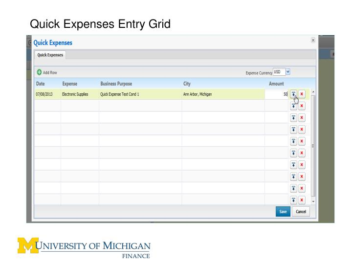 Quick Expenses Entry Grid