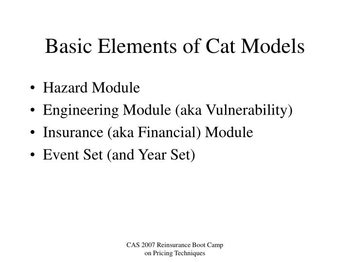 Basic elements of cat models