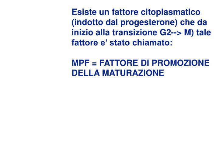 Esiste un fattore citoplasmatico  (indotto dal progesterone) che da inizio alla transizione G2--> M) tale fattore e' stato chiamato: