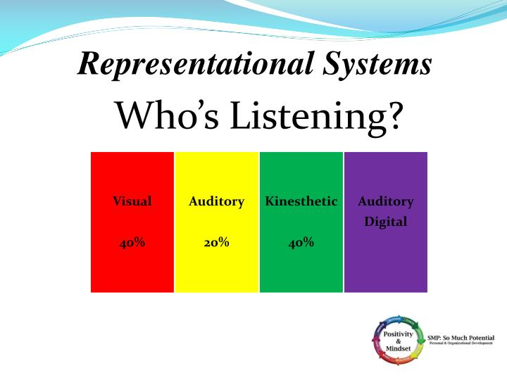 Representational Systems