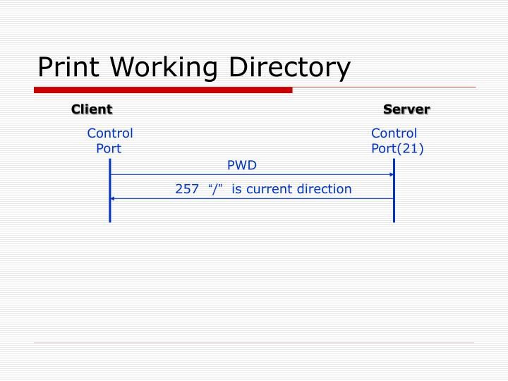 Print Working Directory