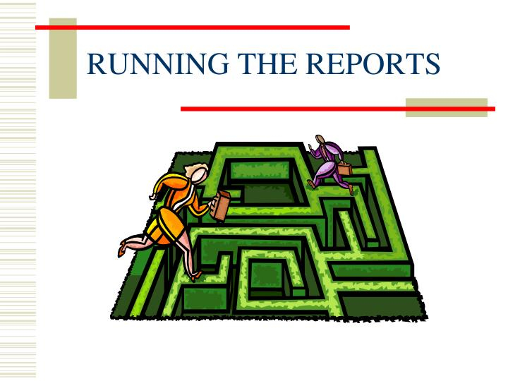 RUNNING THE REPORTS
