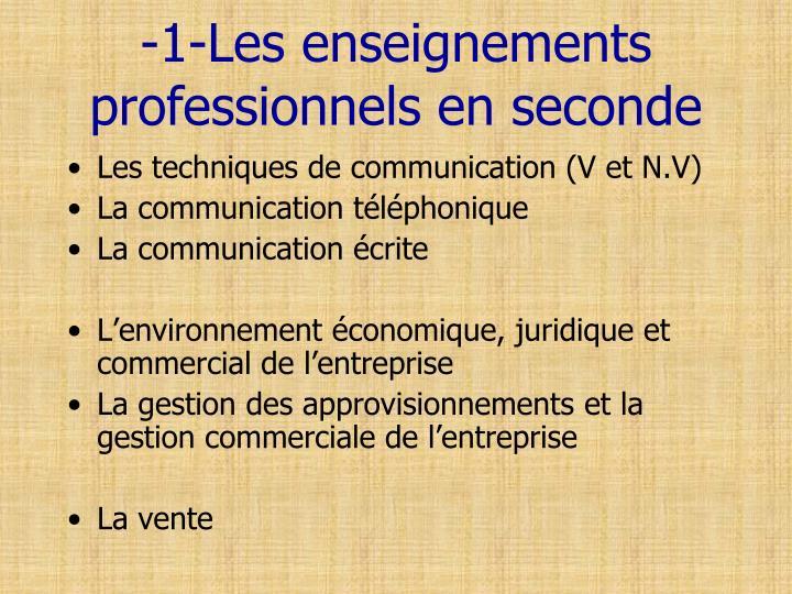 -1-Les enseignements professionnels en seconde