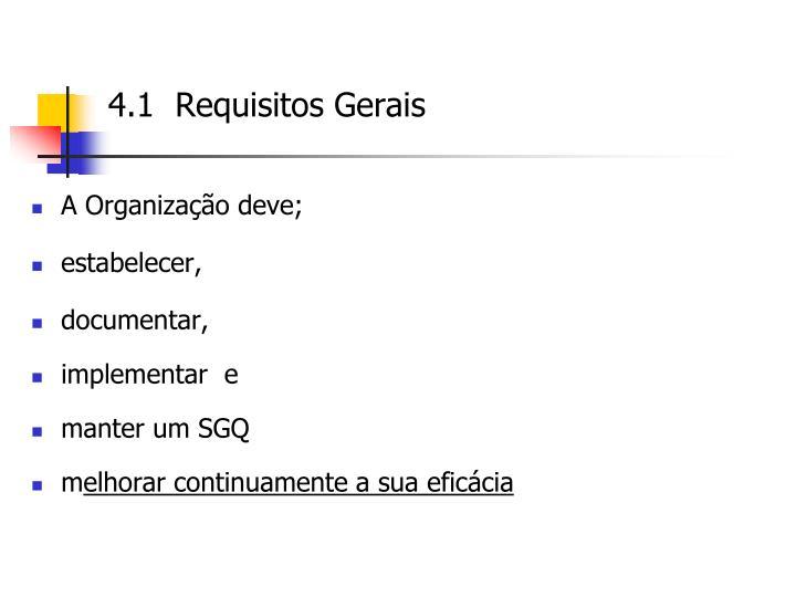 4.1  Requisitos Gerais