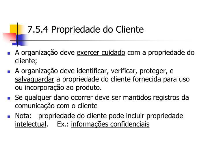 7.5.4 Propriedade do Cliente