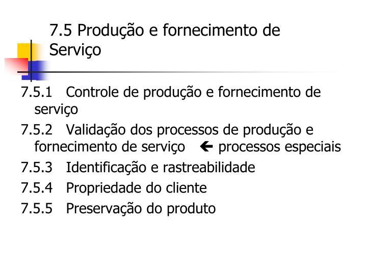 7.5 Produção e fornecimento de Serviço