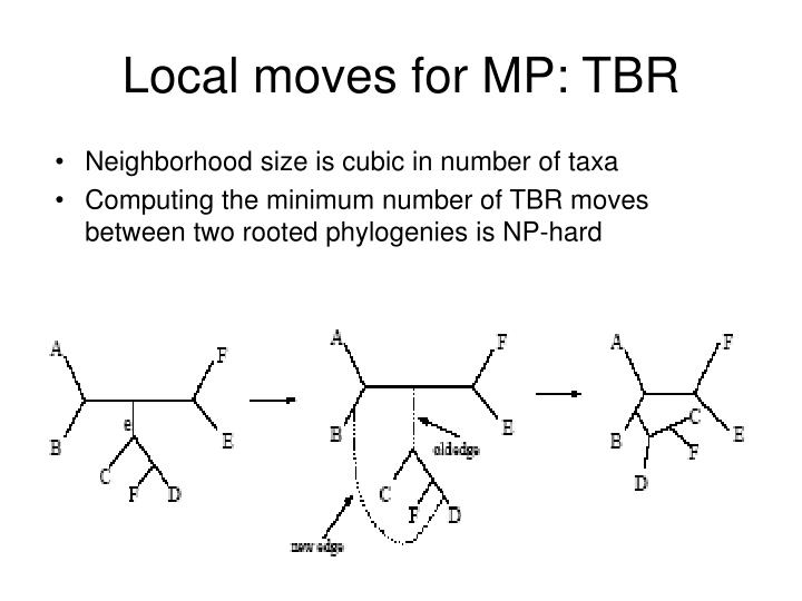 Local moves for MP: TBR