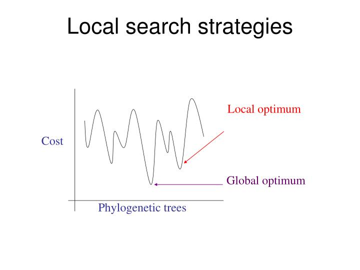 Local optimum