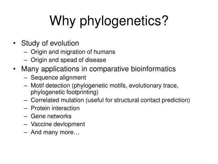 Why phylogenetics?