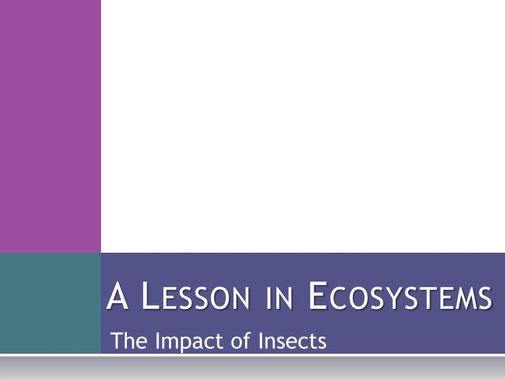 A lesson in ecosystems