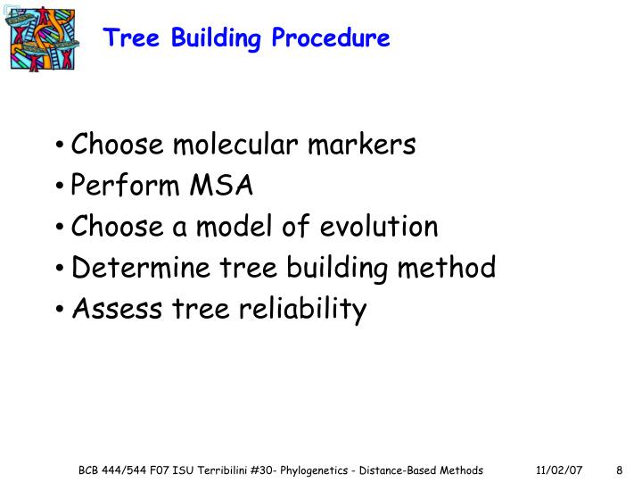 Tree Building Procedure