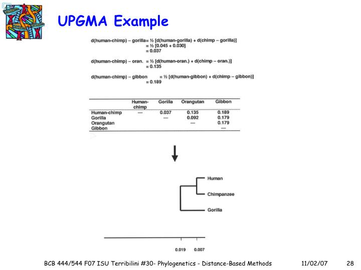 UPGMA Example