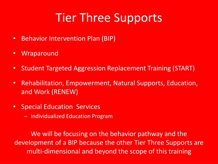 Tier Three Supports