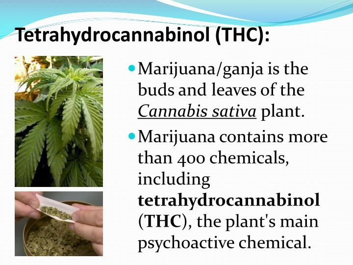 Tetrahydrocannabinol (THC):