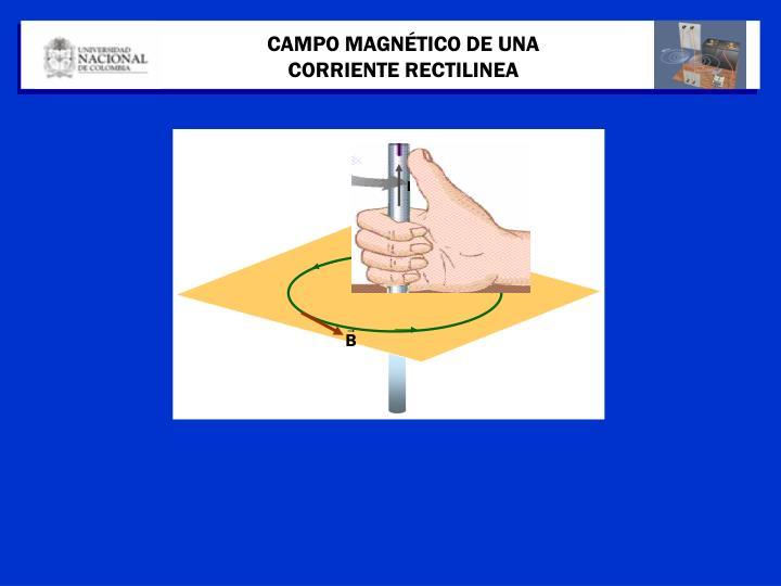 CAMPO MAGNÉTICO DE UNA