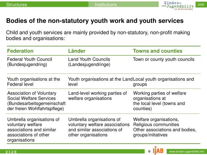 Bodies of the non-statutory youth work and youth services