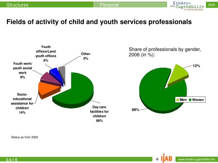 Fields of activity of child and youth services professionals