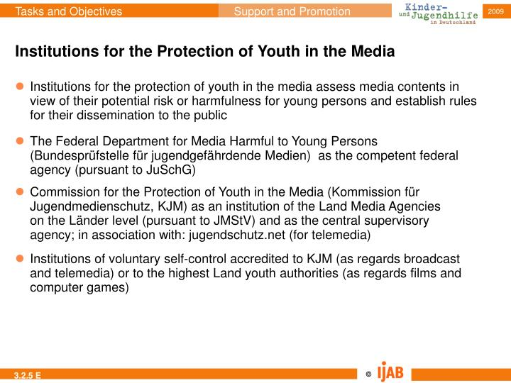 Institutions for the Protection of Youth in the Media