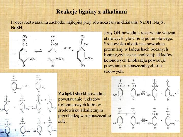 Reakcje ligniny z alkaliami