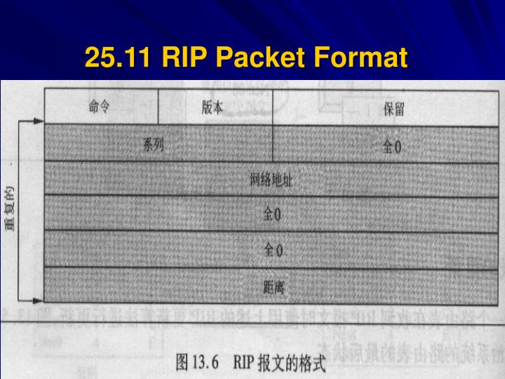 25.11 RIP Packet Format