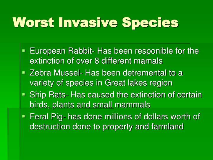 Worst Invasive Species