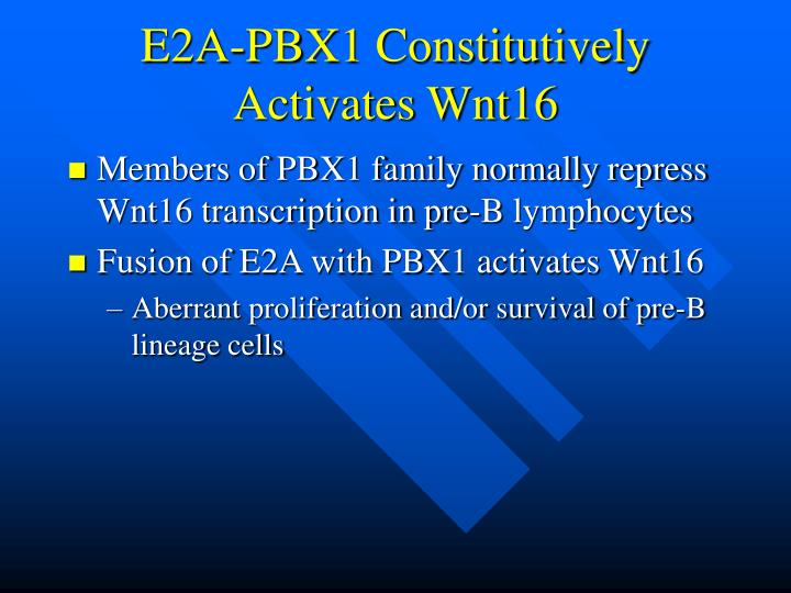 E2A-PBX1 Constitutively Activates Wnt16