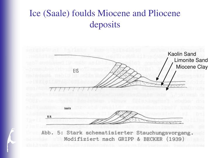 Ice (Saale) foulds Miocene and Pliocene deposits