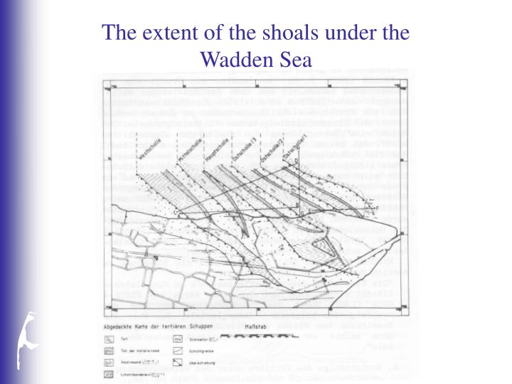 The extent of the shoals under the