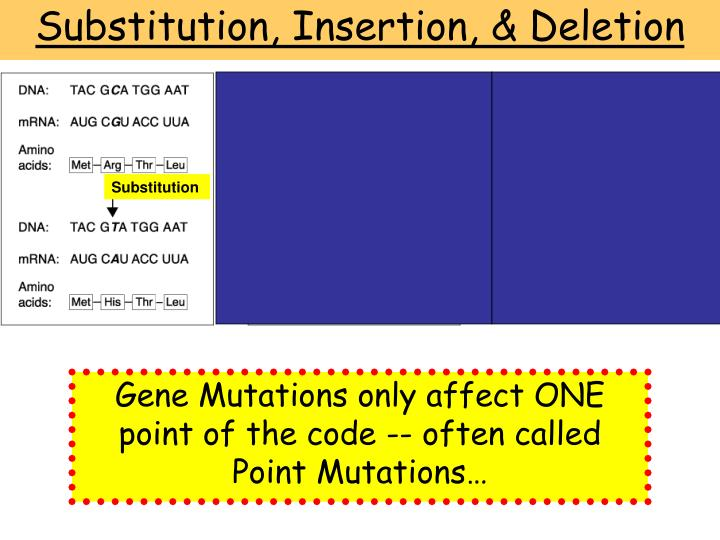 Substitution, Insertion, & Deletion