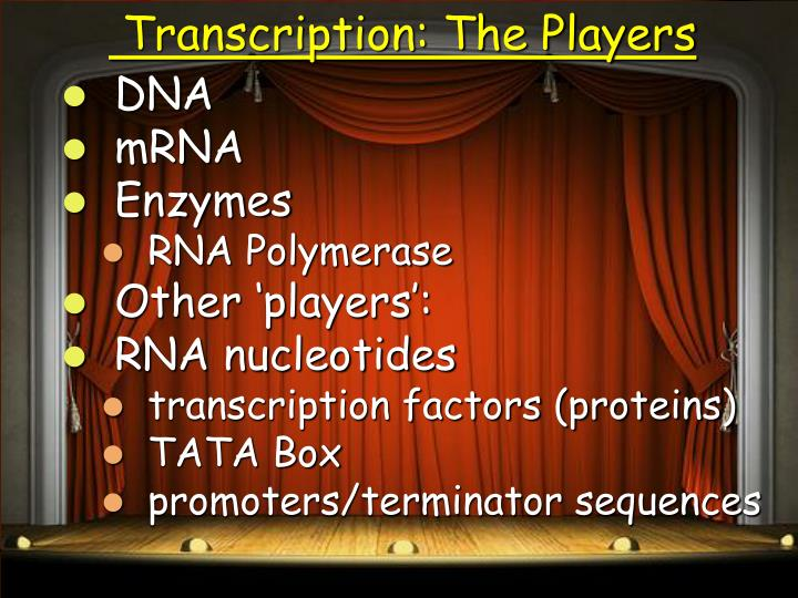 Transcription: The Players