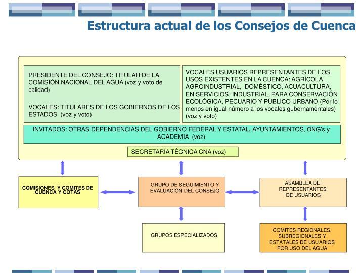 VOCALES USUARIOS REPRESENTANTES DE LOS USOS EXISTENTES EN LA CUENCA: AGRÍCOLA, AGROINDUSTRIAL,  DOMÉSTICO, ACUACULTURA, EN SERVICIOS, INDUSTRIAL, PARA CONSERVACIÓN ECOLÓGICA, PECUARIO Y PÚBLICO URBANO (Por lo menos en igual número a los vocales gubernamentales) (voz y voto)