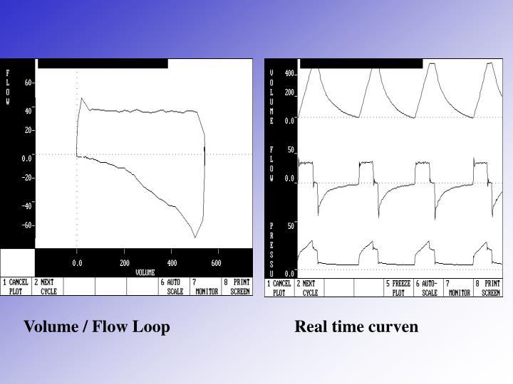 Volume / Flow Loop                             Real time curven