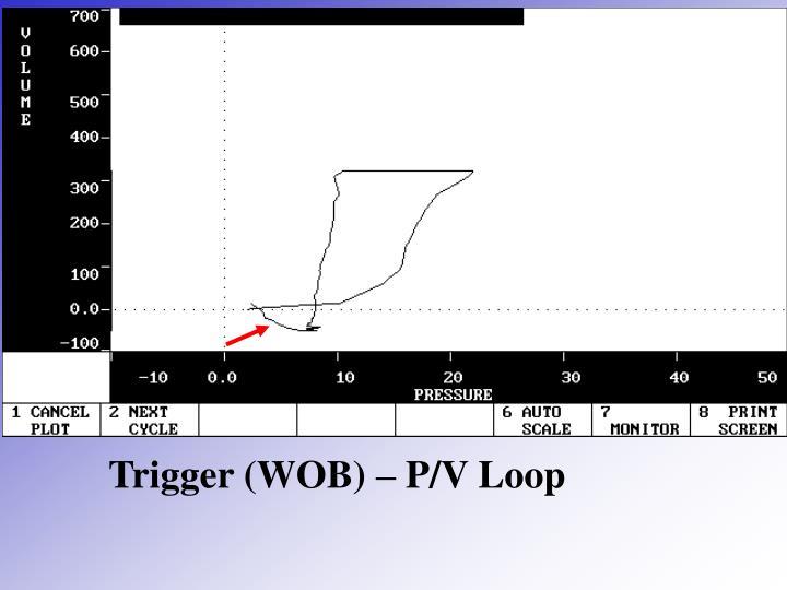 Trigger (WOB) – P/V Loop