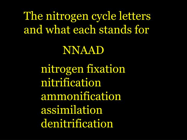 The nitrogen cycle letters