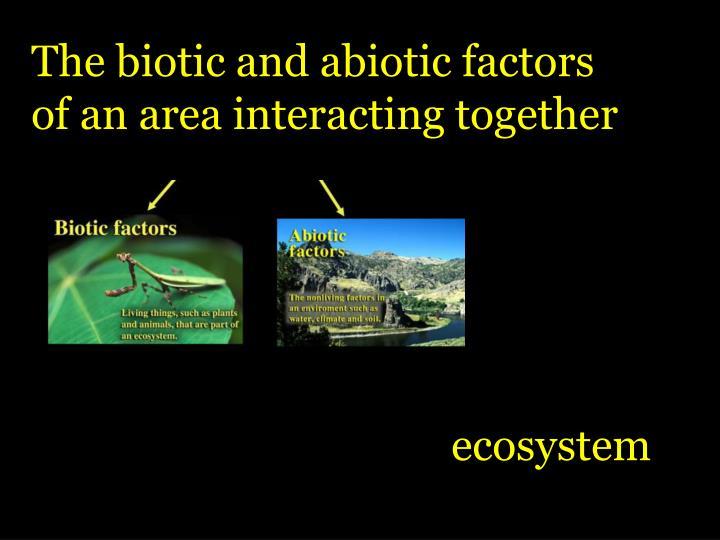 The biotic and abiotic factors