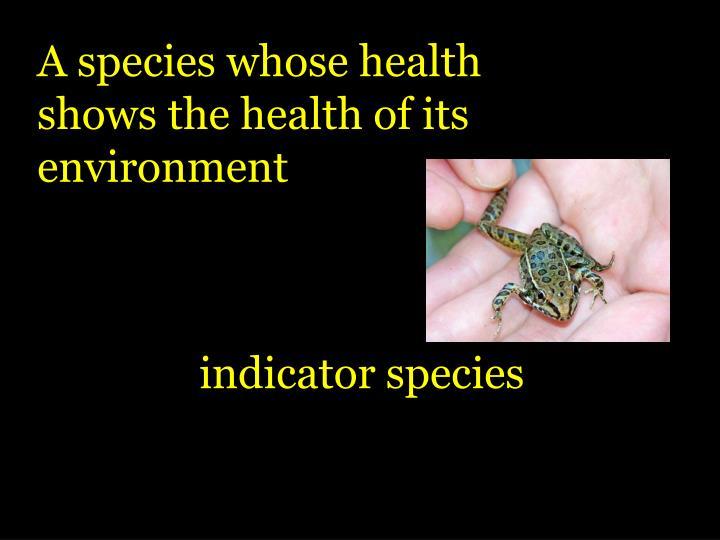 A species whose health