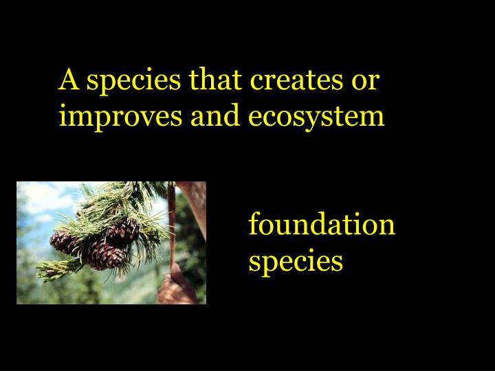 A species that creates or