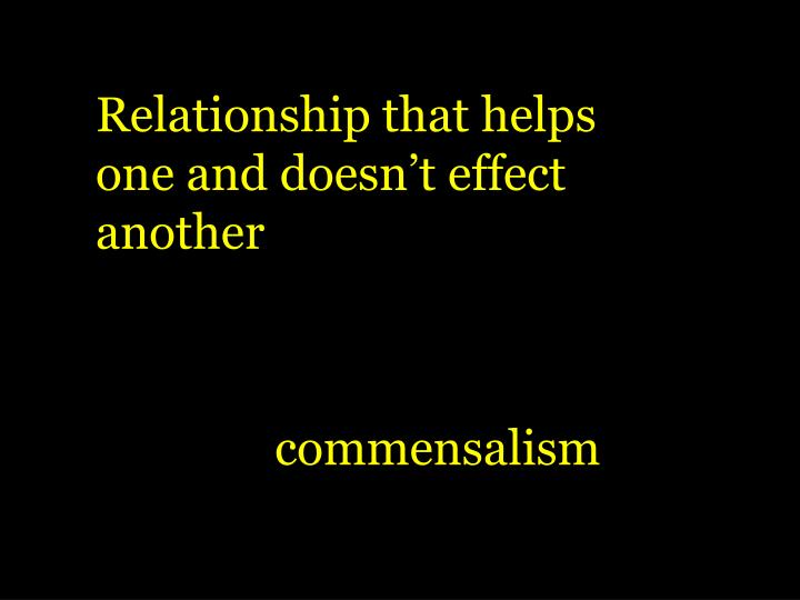 Relationship that helps