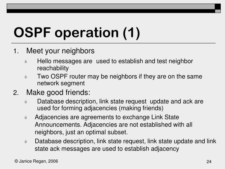 OSPF operation (1)