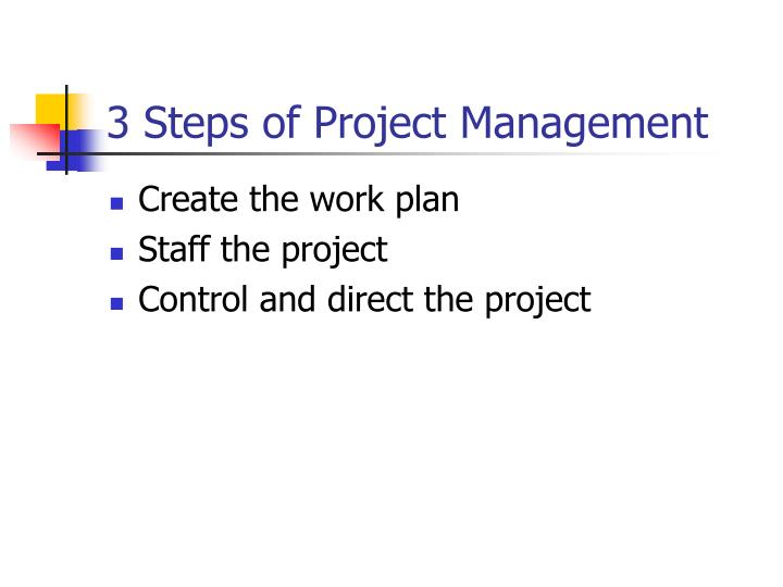 3 Steps of Project Management