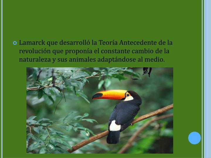 Lamarck que desarrolló la Teoría Antecedente de la revolución que proponía el constante cambio de la naturaleza y sus animales adaptándose al medio.