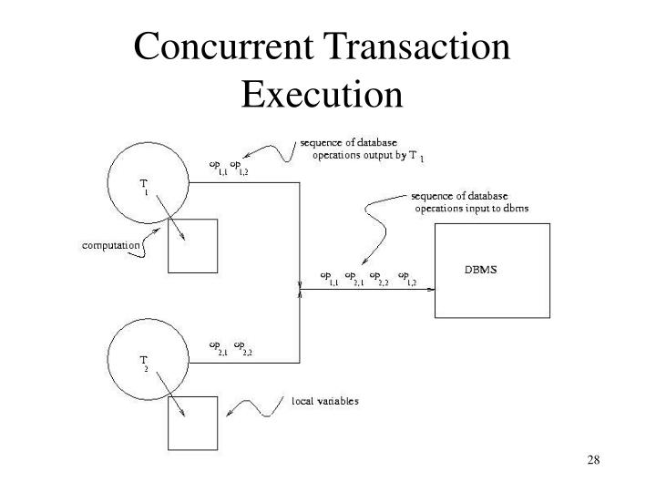 Concurrent Transaction Execution