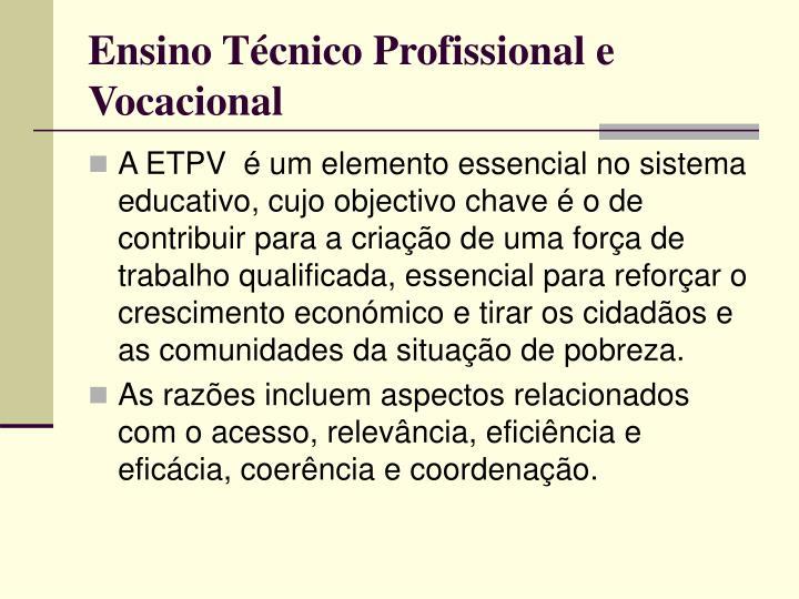 Ensino Técnico Profissional e Vocacional